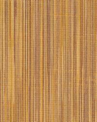 Glade Cinnamon by