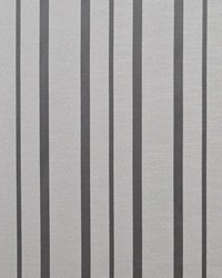 Greenwich Stripe Platinum by