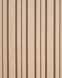 Greenwich Stripe Spice by