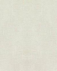 Hawksbill Snow by