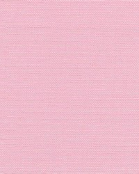 Kimberly Pink by