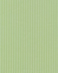 Madison Avenue Wasabi by