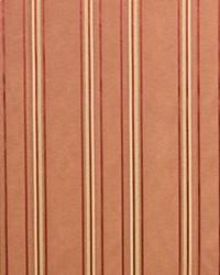 Morelli Stripe Adobe by