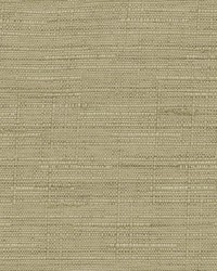 Kasmir Notting Hill Sauterne Fabric