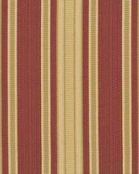 Panache Stripe Geranium by