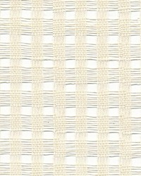 Pickwick Sheer Off White by