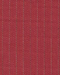 Pinstripe Berry by