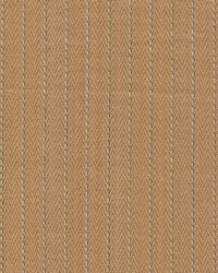 Pinstripe Caramel by