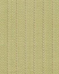 Pinstripe Honeydew by