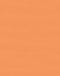 Quintessential Orange by