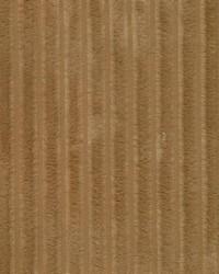 Ridgewood Stripe Gingersnap by