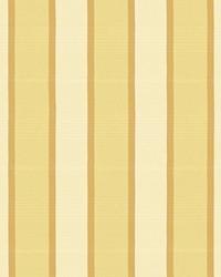 Sandino Stripe Champagne by