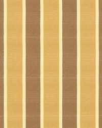 Sandino Stripe Goldenrod by