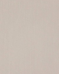 Sh330 Taupe by
