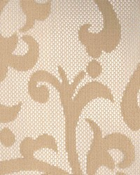 Song Taupe by