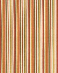 Spring Stripe Apricot by
