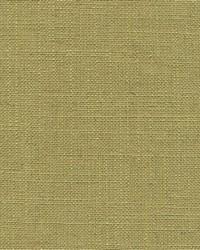 Stultz Texture Aloe by