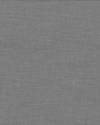 Subtle Chic Pewter by