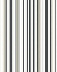 Tahitian Stripe Pewter by