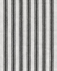 Ticking Stripe Black by
