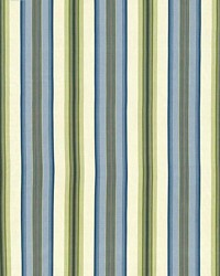 Tropical Stripe Willow by