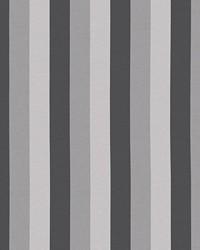 Winette Stripe Half Moon by