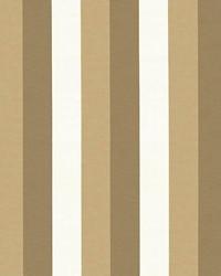 Winette Stripe Satinwood by