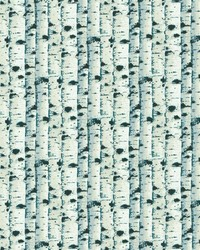 Birch Teal by