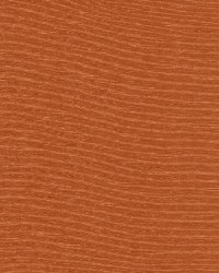 Boxwood Spice by