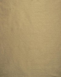 Complementary Taupe by
