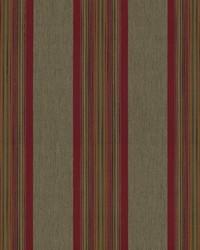 Dapper Stripe Picante by