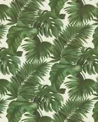 Keanu Palm 110 Moss by