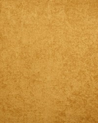 Kasmir Marvelous Gold Fabric