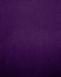Nampara Purple by