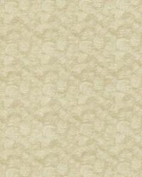 Nimbus Dove by
