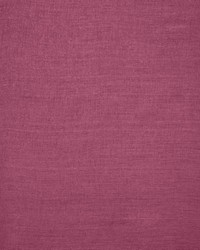 Prisma Fuchsia by