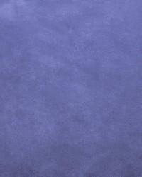 Retrospective Blueberry by