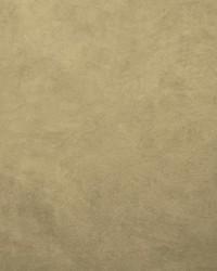 Retrospective Lichen by
