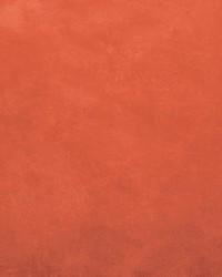 Retrospective Orange by