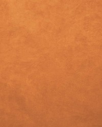 Retrospective Papaya by