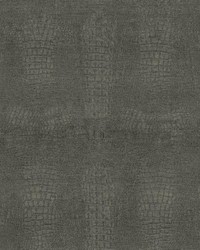 Ritzy Charcoal by