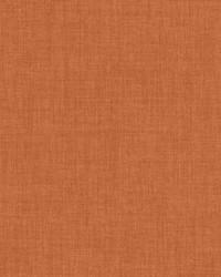 Robust Orangeade by
