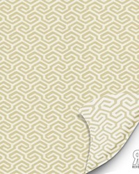 Segmental Linen by