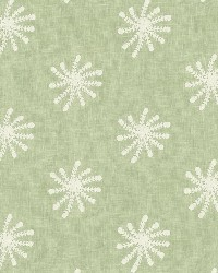 Snowflake Aquamarine by