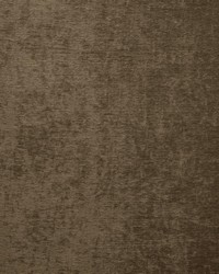 Kasmir Splendid Chocolate Fabric