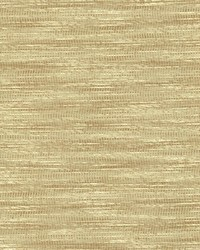 Striated Beige by