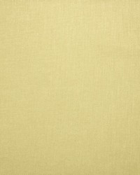 Kasmir Subtle Chic Sunshine Fabric