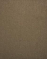 Kasmir Subtle Chic Toast Fabric