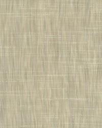 Tao Texture Platinum by