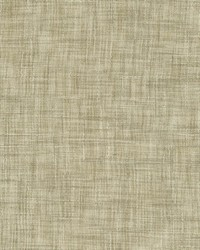 Tao Texture Sandstone by
